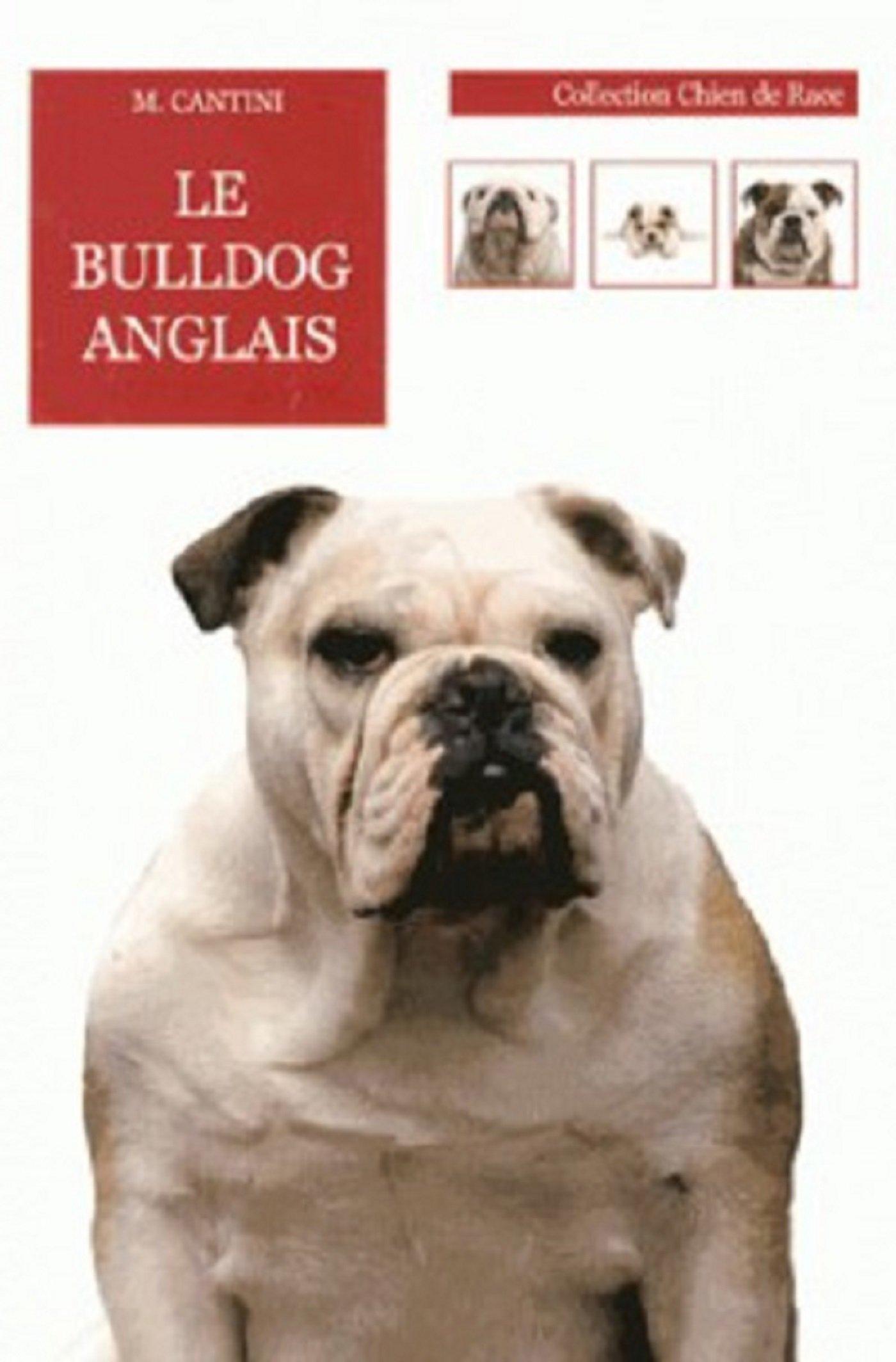 Le Bulldog Anglais 9782732897530 Amazoncom Books