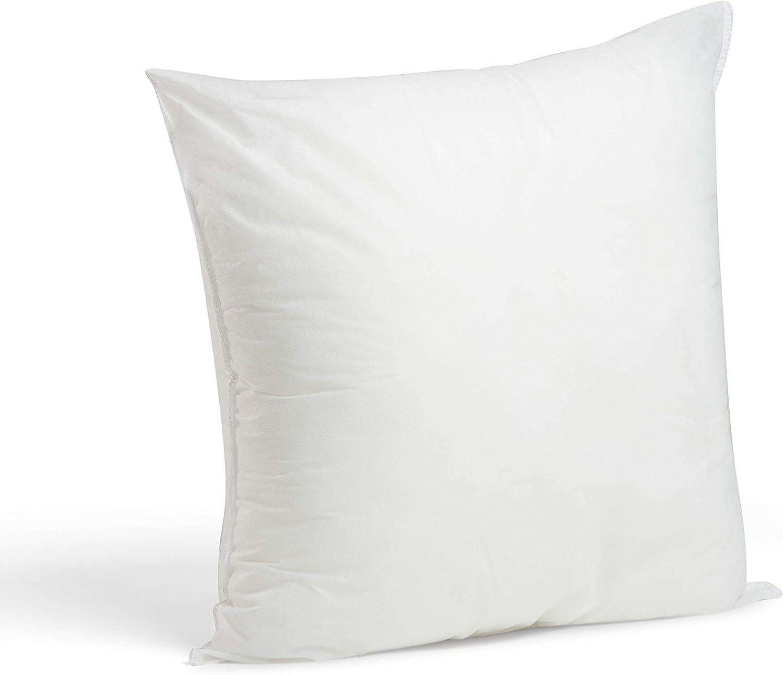 Foamily Premium Hypoallergenic Stuffer Pillow Insert Sham Square Form Polyester, 22
