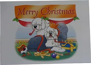 Old English Sheepdog Christmas Cards Set of 10 cards /& 10 envelopes