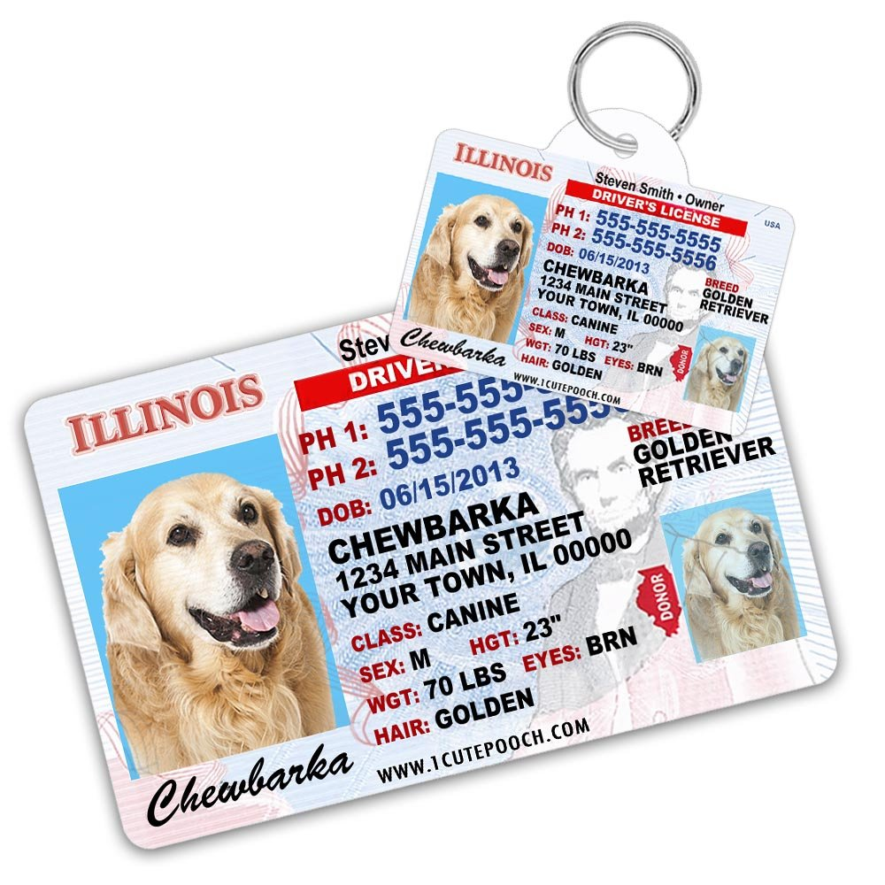 Illinois Driver License Custom Dog Tag for Pets and Wallet Card - Personalized Pet ID Tags - Dog Tags For Dogs - Dog ID Tag - Personalized Dog ID Tags - Cat ID Tags - Pet ID Tags For Cats by 1 Cute Pooch