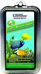 Ocean Nutrition Food Morning Algae, 12g, Green