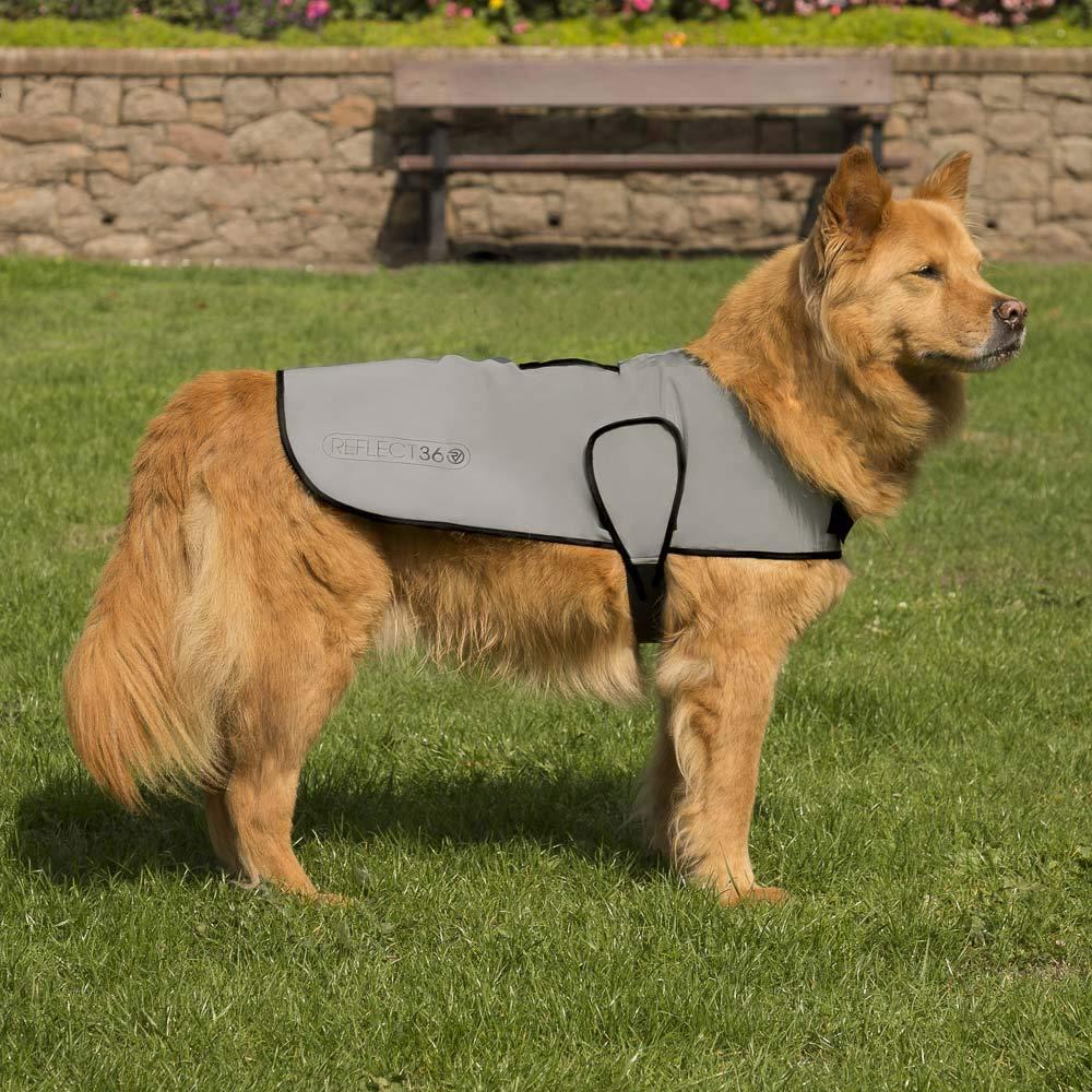 Proviz Waterproof Dog Jacket REFLECT360-100/% Reflective and Waterproof X Large