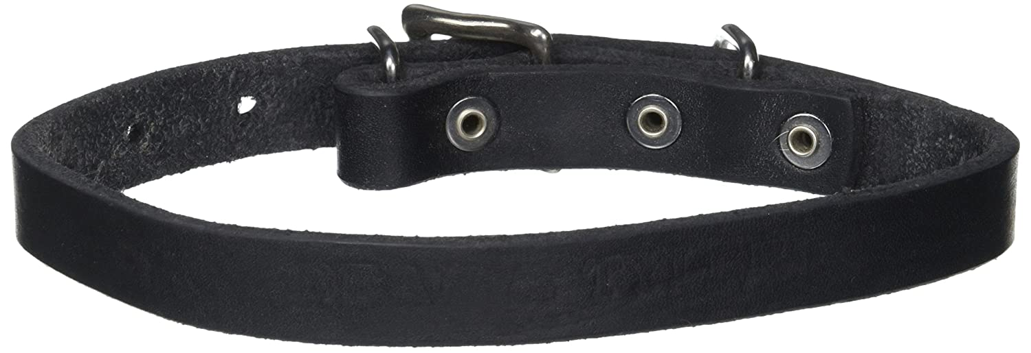 Dean and Tyler B and B , Basic Leather Dog Collar with Strong Nickel Hardware Black Size 16-Inch by 3 4-Inch Fits Neck 14-Inch to 18-Inch