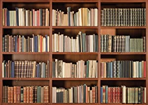 LYWYGG 8X6FT Bookshelf Backdrop Vintage Bookcase Magic Books Grunge Ancient Library Vinyl Photography Background Photo Studio Props CP-49-0806