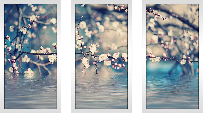 Picture Perfect International Underwater 4 Framed Plexiglass Art Set of 3 Wall-Decor 13.5 W x 25.5 H x 1 D