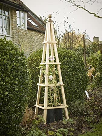 Wooden Garden Obelisk Australia Garden Ftempo