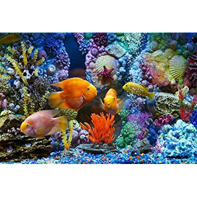 OfinaBiz New 1000 Pieces Jigsaw Puzzles Aquarium Fish Coral Shells for Kids and Adults Wooden Toy Game Educational: Toys & Games
