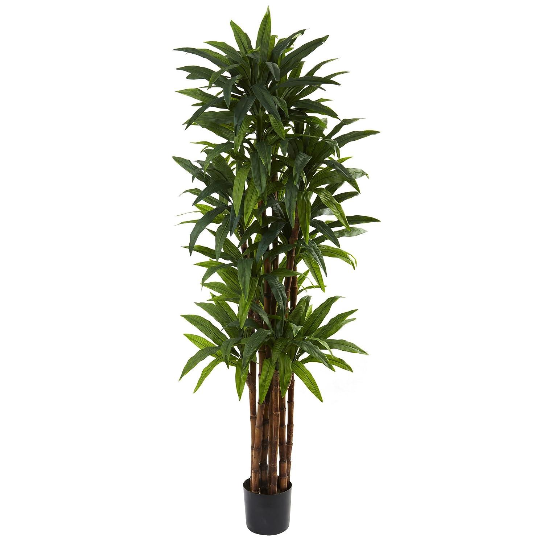 Nearly Natural 5403 Dracaena Tree, 6.5-Feet, Green