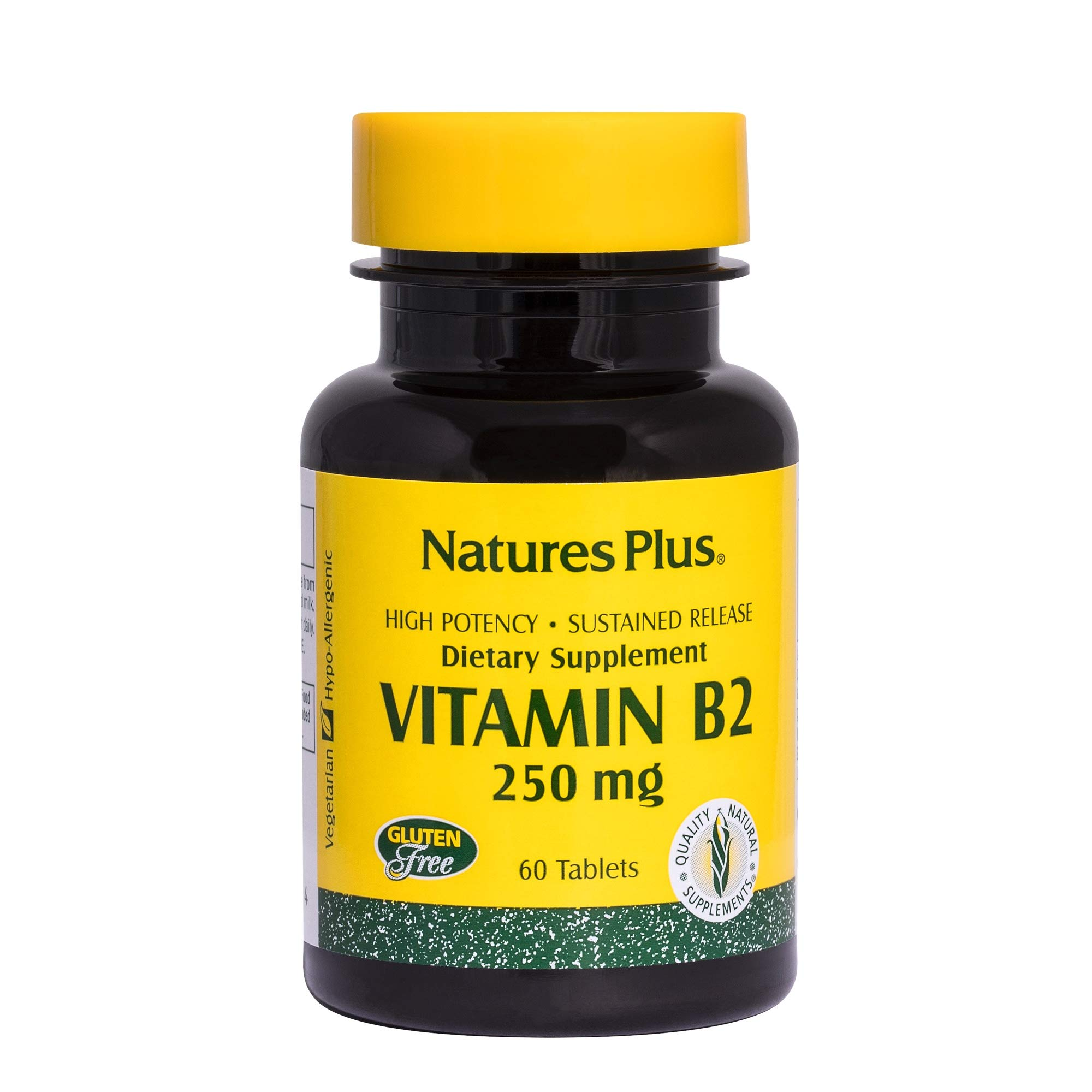 Natures Plus Vitamin B2 (Riboflavin) - 250 mg, 60 Vegetarian Tablets, Sustained Release - Energy & Metabolism Booster, Digestion & Immune System Support Supplement - Gluten Free - 60 Servings