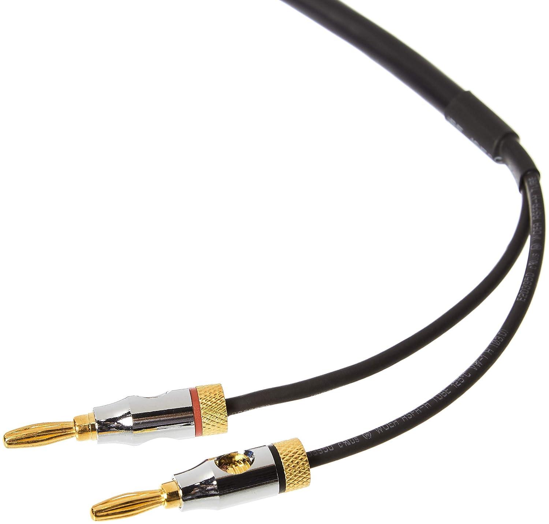 AmazonBasics - Cable de altavoces con puntas de tipo banana chapadas en oro, CL2, 99,9 % libre de oxígeno, 3,6 m: Amazon.es: Instrumentos musicales