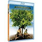 My Sweet Orange Tree - Meu Pe De Laranja Lima (2012) [Import]