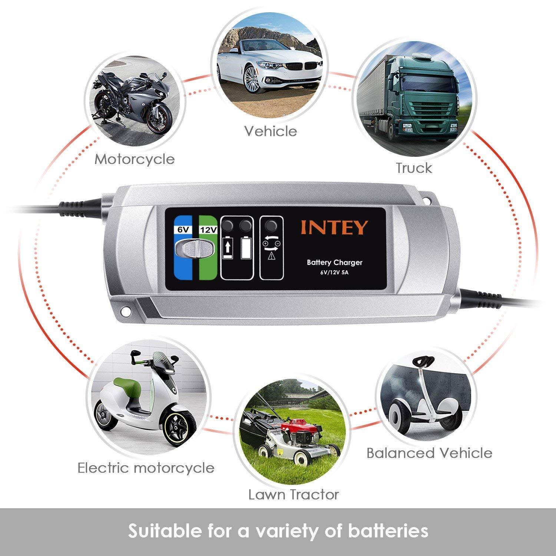 Amazon.com: Intey C9305 Cargador de batería inteligente de ...