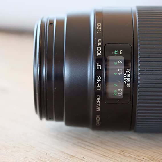 The 8 best canon 100mm f 2.8 macro lens review