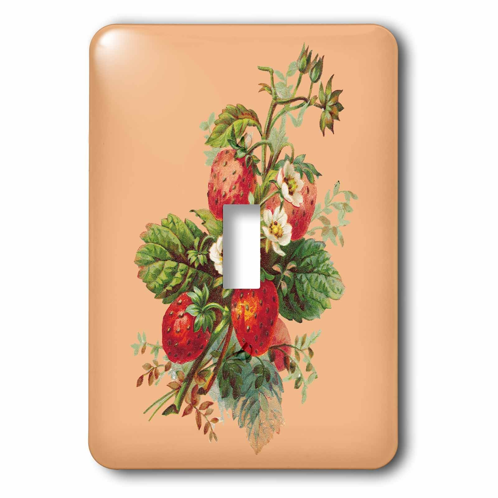 3dRose lsp_170330_1 Strawberry Plant with Fruits and White Flowers Light Switch Cover