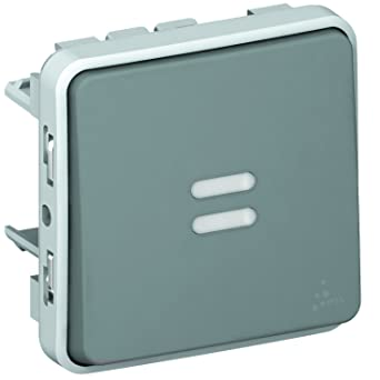 Legrand LEG69937 Plexo - Interruptor temporizado luminoso, color gris