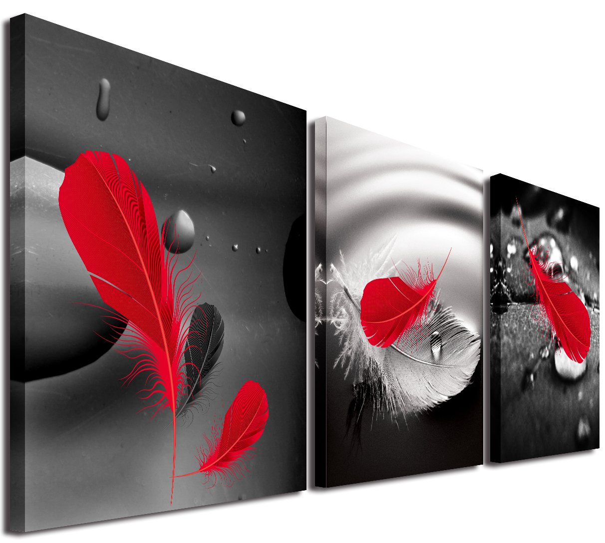 Mon Art 30cm x 30cm x 3 Pics Wall Art Painting Abstract Art in Black Background Red Feather on Canvas Wall Decor Home Decor Decoration Bathroom Bedroom Living Room Stretched and Framed Ready to Hang