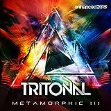 Metamorphic III