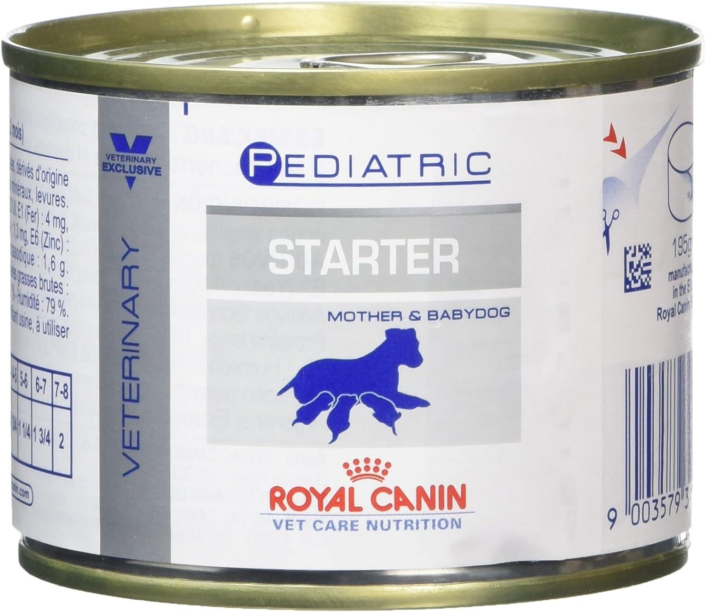 Royal Vet Canine Starter Mousse Caja 12X195Gr 2340 g