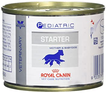 Amazon.com: Royal canin – Comida para Perro Starter Mousse ...
