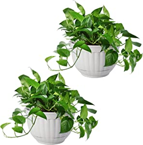 T4U Resin Wall Planter Marble Gray Set of 2, Wall Mounted Garden Plant Flower Pot Basket Container Indoor Outdoor Use for Orchid Herb Aloe Succulent Cactus Home Office Porch Wall Decoration Gift