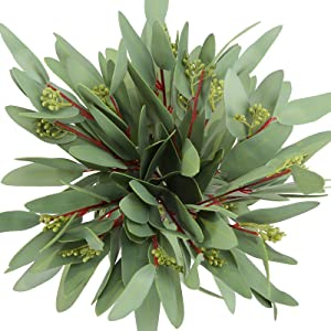 Greentime 8 Pack Artificial Eucalyptus Long Olive Leaf Stem Eucalyptus Spray Faux 13 Inches Greenery Eucalyptus Leaves for Bridal Wedding Bouquet Home Greenery Holiday Greens Christmas Decor