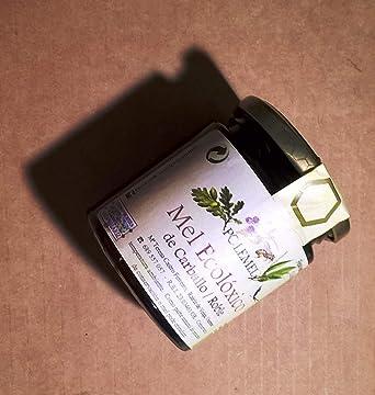 Pack Miel ecológica tarros 320 gr Polemel Degustación (Roble/Zarzamora): Amazon.es: Alimentación y bebidas