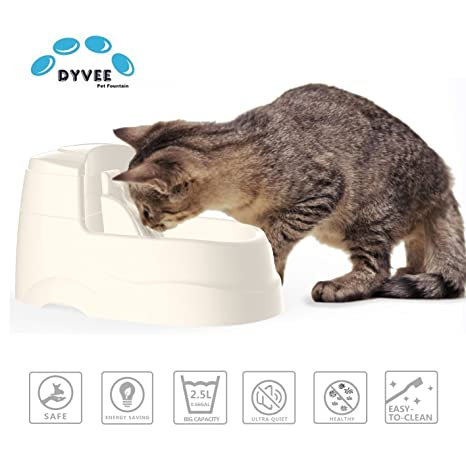 Pet Supplies : Cat Drinking Fountain, Dog Water Dispenser, Pet ...