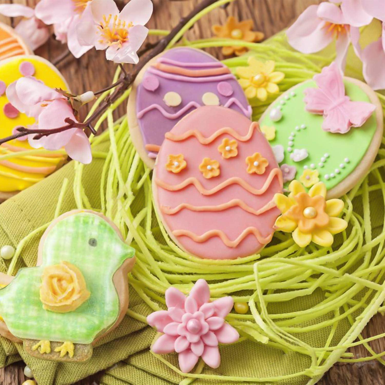Karotten Schmetterlinge Joyoldelf Ausstechf/örmchen Ostern Kaninchen Pl/ätzchen Ausstecher Osterpl/ätzchen,Oster Ausstechformen Biskuitform von K/üken Eier
