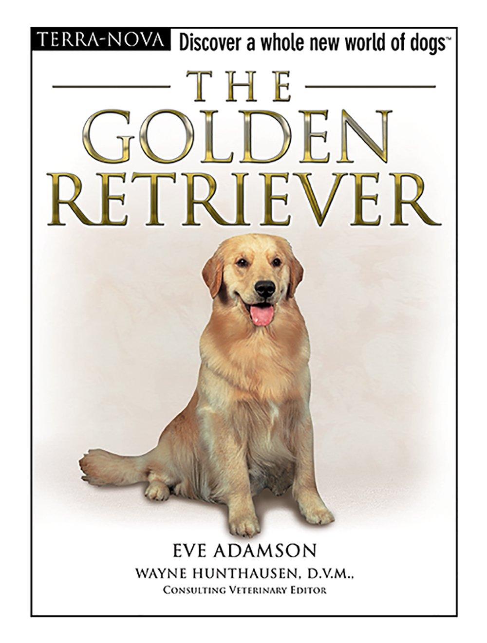 Download The Golden Retriever (Terra-Nova) pdf