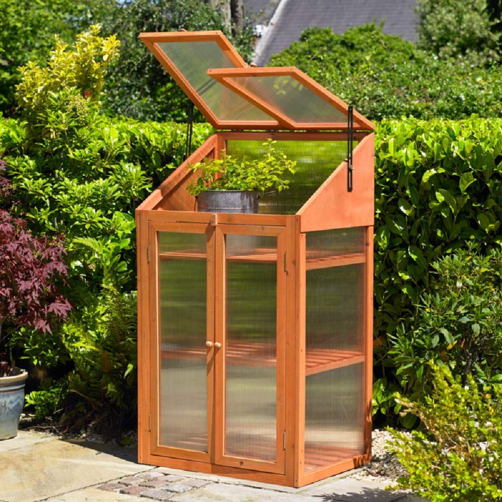 Transparent Kingfisher Ghwood Gewachshaus Holz Einheitsgrosse Garten Gartenarbeit