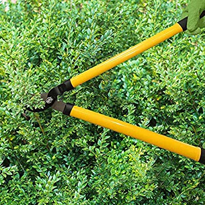 Centurion Garden and Outdoor Living 1222 Cutting Set, Yellow : Garden & Outdoor