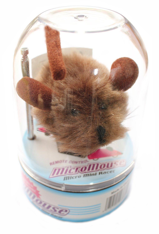 Micro Mouse Mini Racer - Gato de juguete: Amazon.es: Productos para mascotas