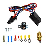"BLACKHORSE-RACING 16"" 16 Inch Electric Radiator Fan High 3000 + CFM Thermostat Wiring Switch Relay Kit Black"