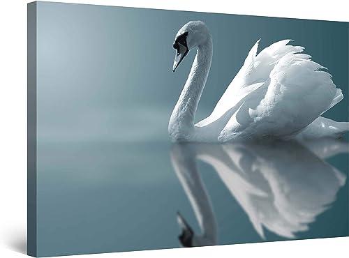 Startonight Wall Art Canvas White Swan on Water