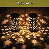 Solar Pathway Lights Outdoor Dusk to Dawn 16.5 inch Super Bright Starry Decor Landscape Garden Light Decorations 2 Pack