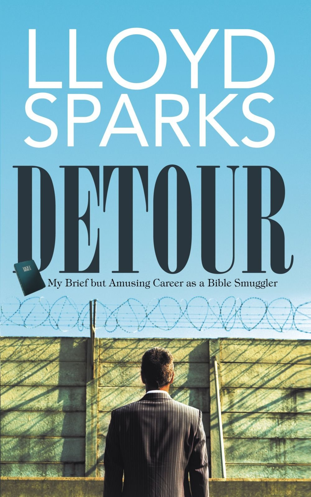Download Detour: My Brief but Amusing Career as a Bible Smuggler pdf epub