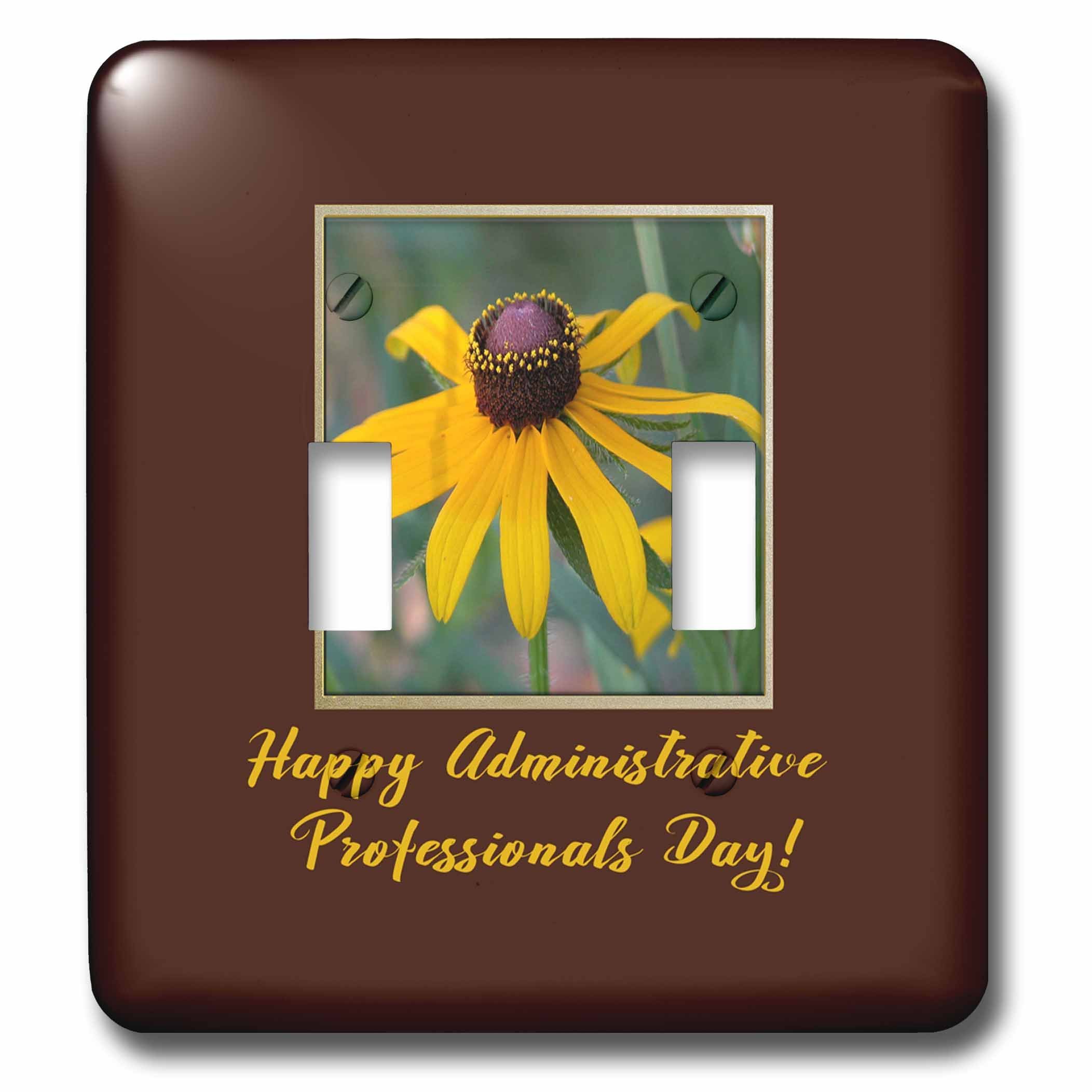 3dRose Beverly Turner Administrative Professionals Day - Administrative Professionals Day, Blacked Eyed Susan Flower, Frame - Light Switch Covers - double toggle switch (lsp_282192_2)