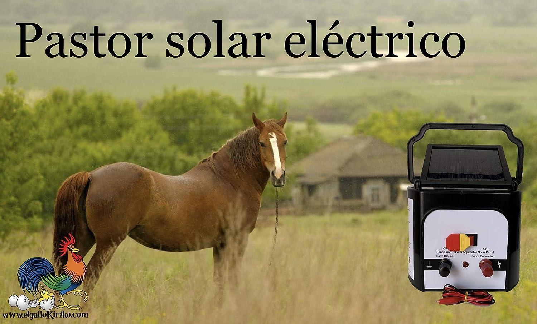 El gallo Kiriko Electrificateur de cl/ôture Solaire
