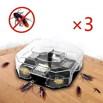 Kakerlaken Fallebenma Gegen Kakerlaken Schabenfalle 3 Stück Eco