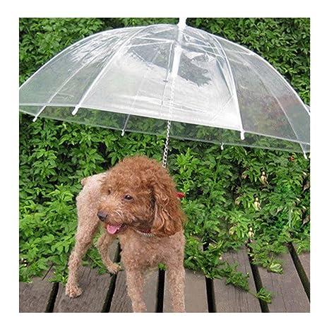 Sotoboo Paraguas para Mascotas (Paraguas para Perro/Gato), Correa de Perro, Transparente, Impermeable, Paraguas para Mascotas para Paseos Secos en la ...