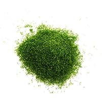 Imported Building Mini Tree Model Leaves Foliage Model Landscape DIY - Green