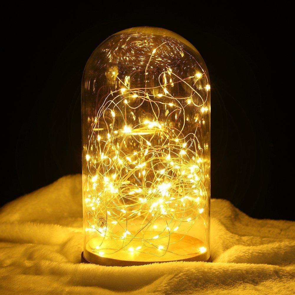 LED Lichterketten, Elebor 33ft 100LED Fernbedienung Wasserdichte ...