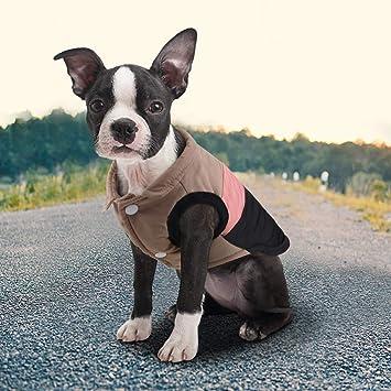 Idepet Mascota Perro Gato Escudo con Correa de Anclaje Color Patchwork Acolchado Cachorro Chaleco Teddy Chaqueta Chihuahua Disfraces Pug ropa: Amazon.es: ...