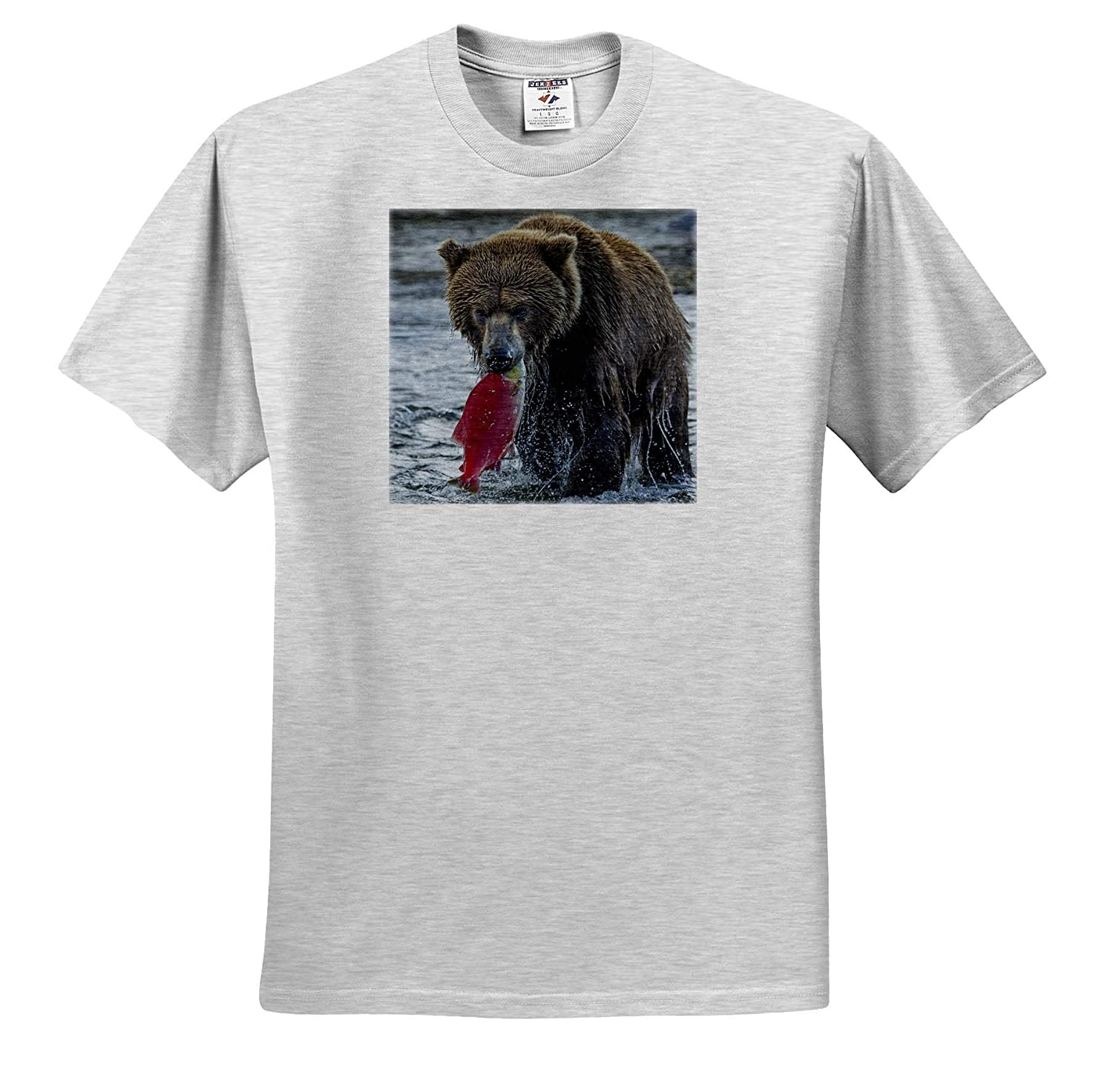 Alaska Adult T-Shirt XL USA Bears ts/_314413 Brown Bear Fishing Katmai National Park 3dRose Danita Delimont
