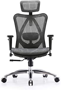 SIHOO Ergonomic Adjustable Office Chair with 3D Arm Rests and Lumbar Support - High Back with Breathable Mesh - Mesh Seat Cushion - Adjustable Head & Reclines Grey