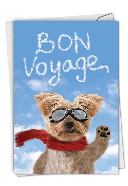 Amazon goodbye dog humorous bon voyage greeting card with goodbye dog humorous bon voyage greeting card with envelope c6345bvg m4hsunfo
