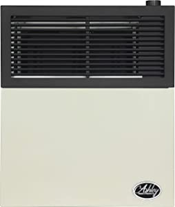 Ashley Hearth DVAG11N 11,000 BTU Direct Vent Natural Gas Heater, Cream