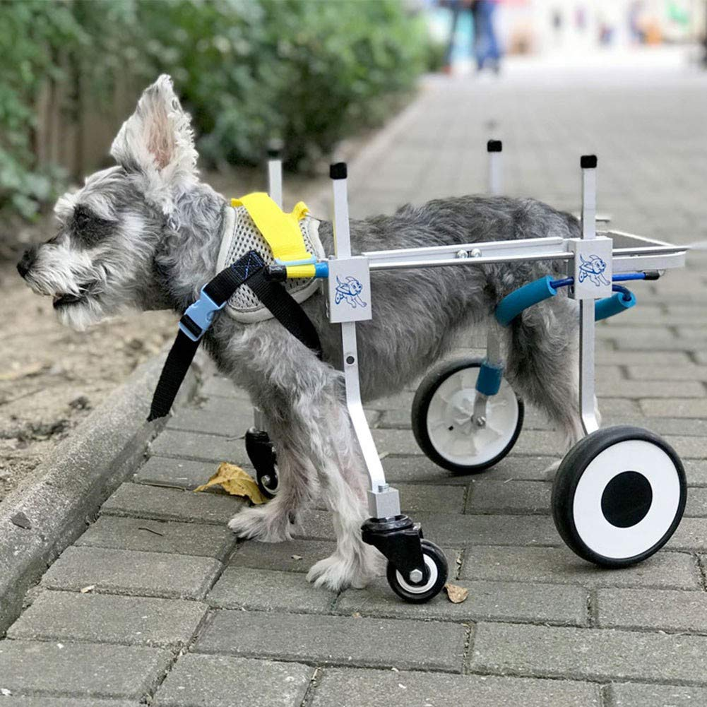 Amazon.com: Adjustable Dog Wheelchair Lightweight Aluminum Scooter ...