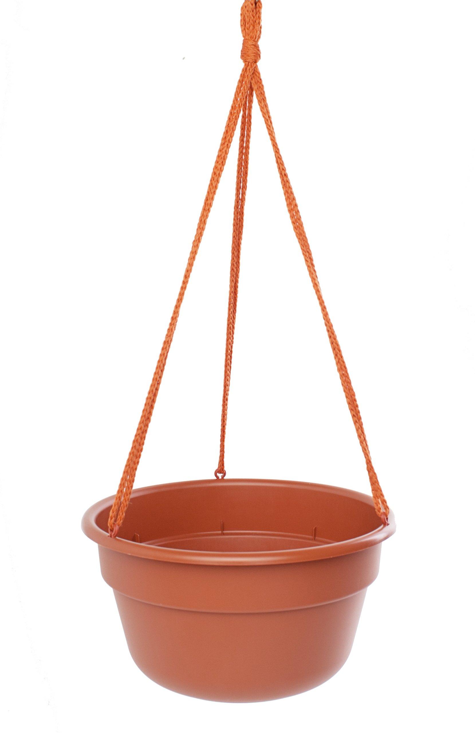 Bloem DCHB1246-12 12-Pack Dura Cotta Hanging Basket/Planter, 12-Inch, Terra Cotta