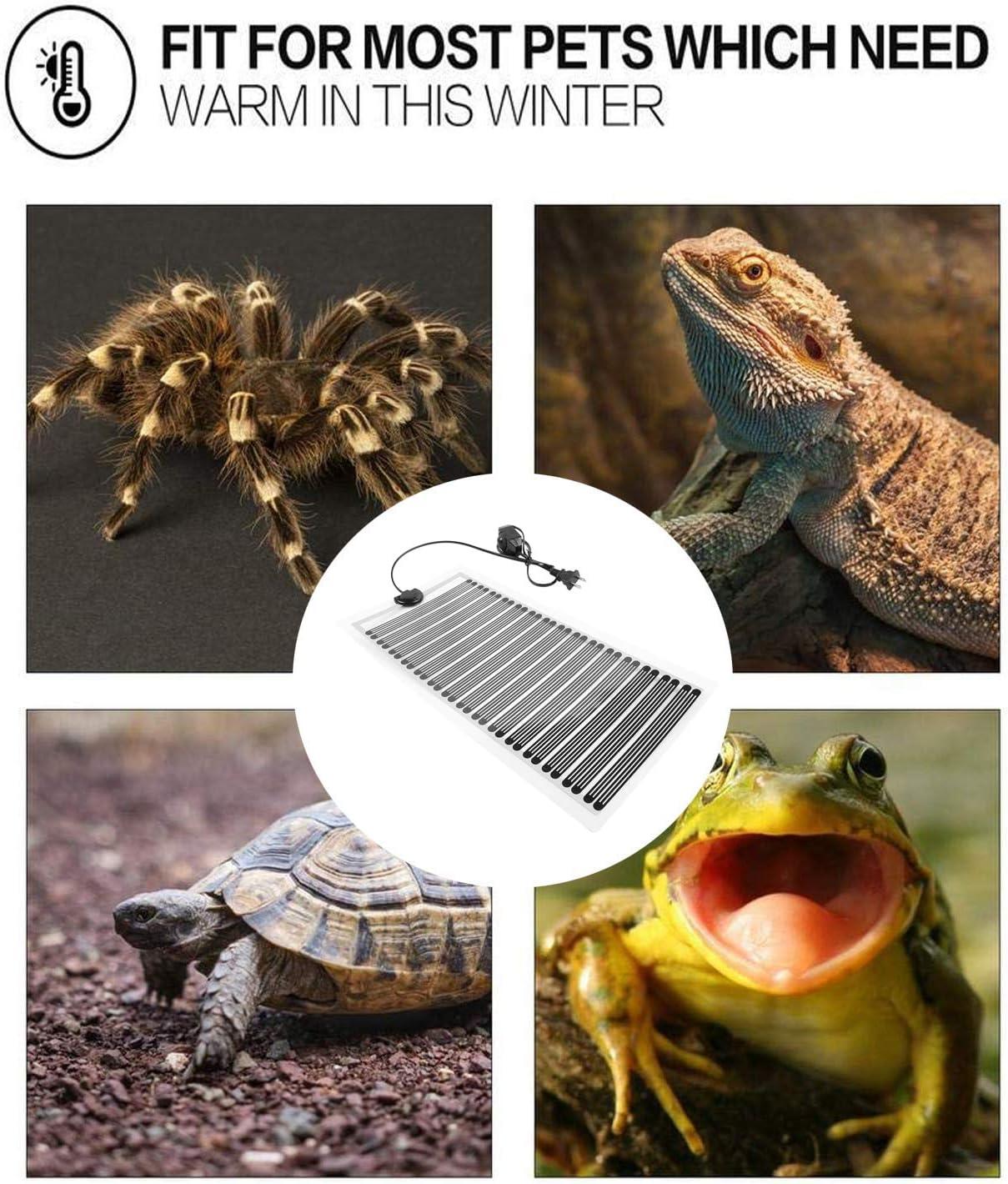 110V 25W Reptile Tank Warmer Terrarium Heater Mat with Temperature Controller Leopard Gecko Heating Pad Fashionclubs Reptile Heat Pad Under Tank Heating Mat